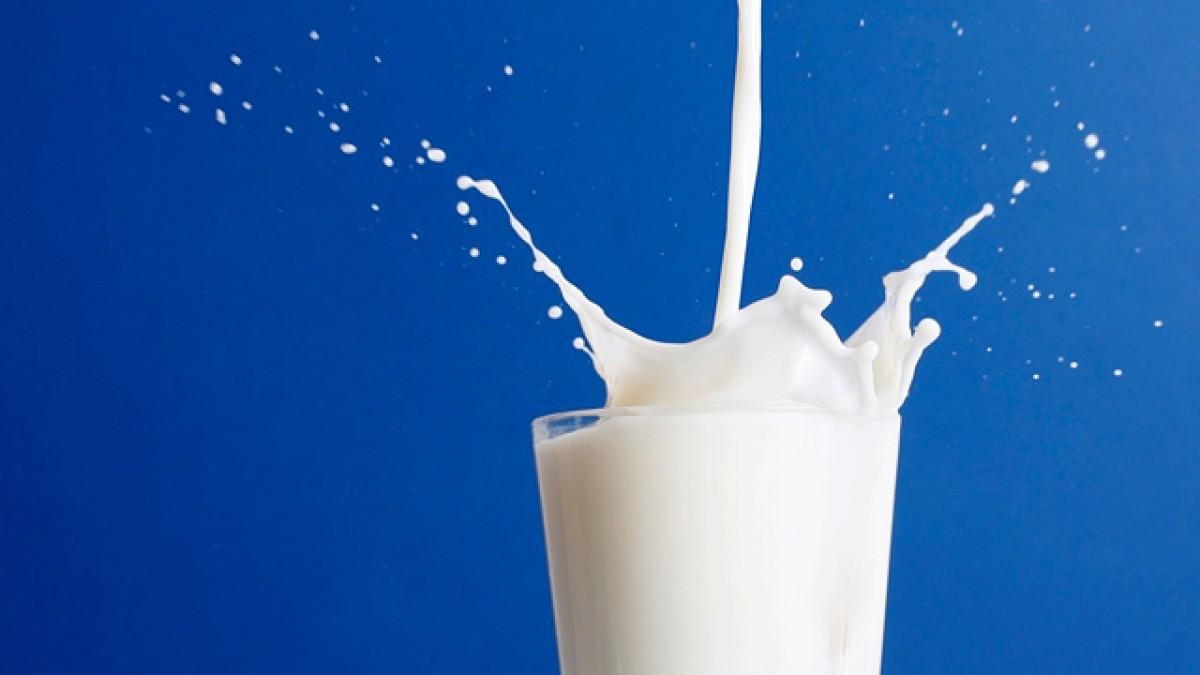 ngmilk - front-end resources   Milk